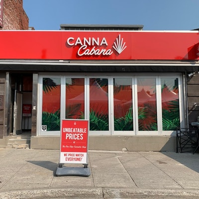 87+Clarence+St. Cannabis Dispensary
